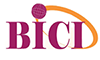 BICI, Bureau International de Consultance en Informatique
